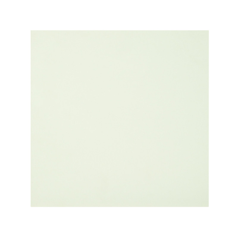 British Ceramic Tile Mono White Wall Floor